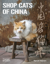 Shop Cats of China Cover
